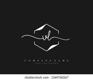 VL initial handwriting logo template vector