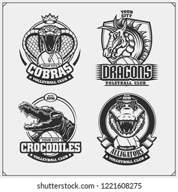 Volleyball badges, labels and design elements. Sport club emblems with cobra, crocodile and dragon.