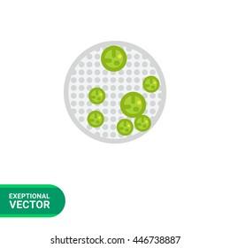 Volvox Vector Icon
