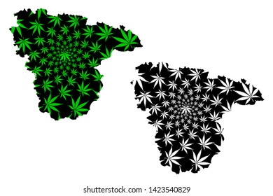 Voronezh Oblast (Russia, Subjects of the Russian Federation, Oblasts of Russia) map is designed cannabis leaf green and black, Voronezh Oblast map made of marijuana (marihuana,THC) foliage,