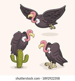 Vulture Bird Cartoon Illustrations Set Collections
