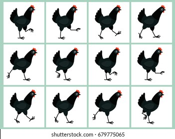 Walking black hen sprite sheet isolated on white background. Vector illustration. Can be used for GIF animation