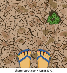 Walking on the dry earth