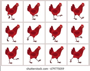 Walking red hen sprite sheet isolated on white background. Vector illustration. Can be used for GIF animation