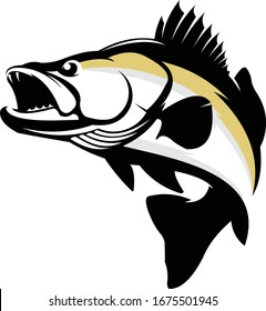 Walleye Logo. A Unique & Fresh Walleye Fish Vector. Great for Walleye logo Template, Decal & Shirts.