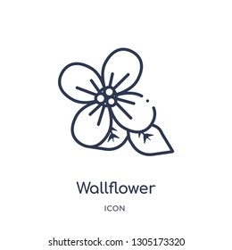 wallflower icon from nature outline collection. Thin line wallflower icon isolated on white background.