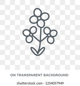 Wallflower icon. Trendy flat vector Wallflower icon on transparent background from nature collection. High quality filled Wallflower symbol use for web and mobile