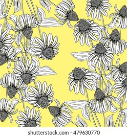 Wallpaper of the contours of echinacea flowers on a yellow background. Vector illustration