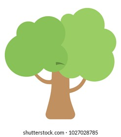 Walnut Tree Flat Colored Icon
