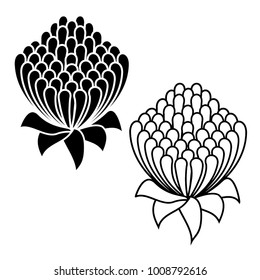 Waratah flower black and white icon set - Waratah is the state floral emblem of New South Wales - Telopea Speciosissima