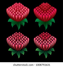 Waratah flower icon set on black background - Waratah is the state floral emblem of New South Wales - Telopea speciosissima