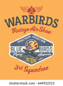 Warbirds aircraft vintage air show, vector print for boy shirt grunge effect in separate layer