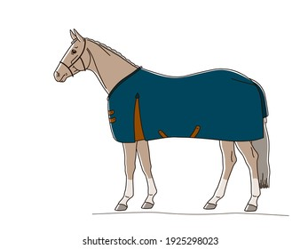 Warm blooded horse dressed in rug stands in profile in a white background