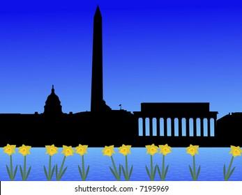 Washington DC skyline in spring with daffodils