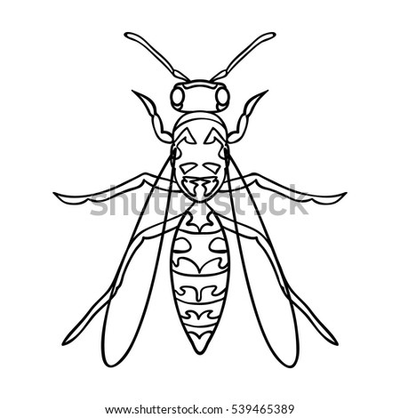 wasp icon outline style isolated on stock vector royalty free