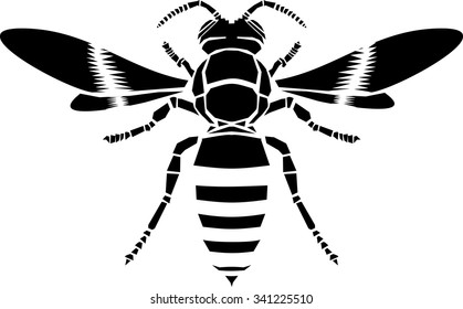 Wasp, vector icon