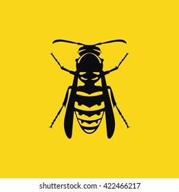 Wasp / Vector illustration