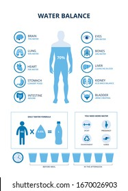 Water balance infographics set with human body and internal organs icons, vector illustration isolated on white background. Medical educational banner with charts.