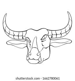 Water Buffalo Head Black and White Illustration