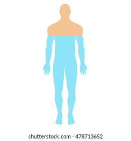 the water content in the human body. human anatomical man silhouette