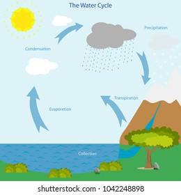 The water cycle. Icon of nature. Chickling weather change.  Vector image hydrological cycle.  Flat design, vector illustration, vector.