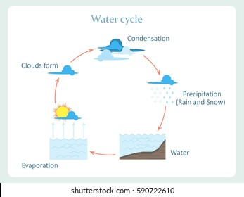 Water cycle scheme for kids education stock vector illustration