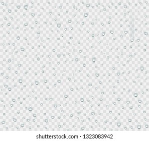 Water droplets of rain or spray isolated on transparent background. Condensate vapor on the glass. Vector illustration.