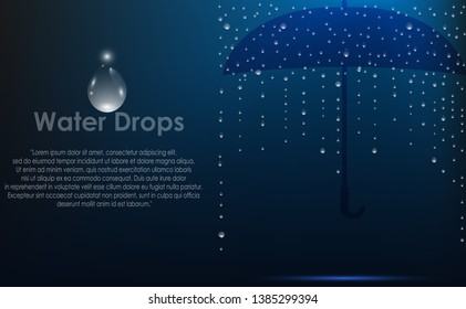 Water drops background. Vector illustration.