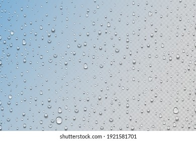 Water drops. Realistic rain droplets on window. Shower glass. Round aqua drips on transparent background. Wet surface with color gradient effect. Decorative humid texture. Vector condensation or dew