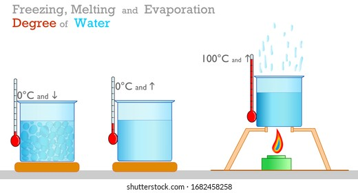 Water freezing, boiling, melting centigrade degrees. Liquids, fluids. Thermometer, test container, temperature gauge and cooker. Physics, chemistry samples.  Study, school. 2d vector illustration