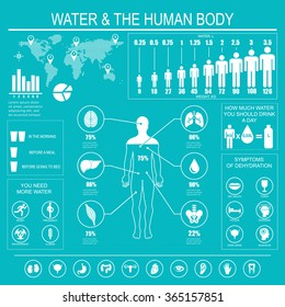 Water and human body infographic on blue background. Useful information about water. Concept of healthy lifestyle. Drink more water. Vector image.