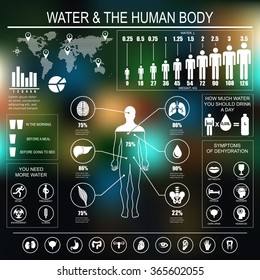 Water and human body infographic on dark background. Useful information about water. Concept of healthy lifestyle. Drink more water. Vector image.