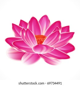 Water lily flower, isolated element to your spa design.