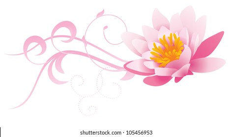 water lily nature vector pink curves isolated on white
