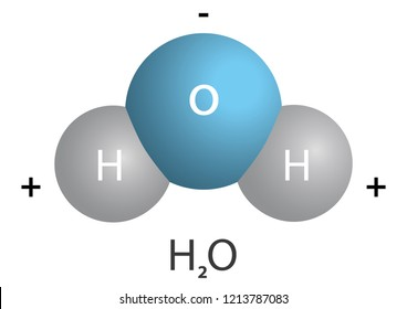 Water (Molecular formula: H2O) is a clear, odorless, tasteless liquid that is essential for most animal and plant life.