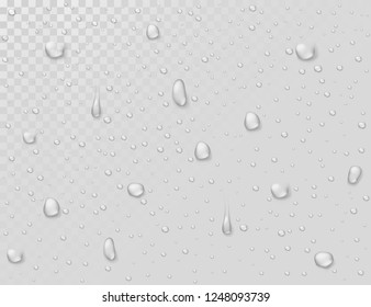 Water rain drops. Droplets on transparent wet glass window. Photorealistic water shower drops vector background