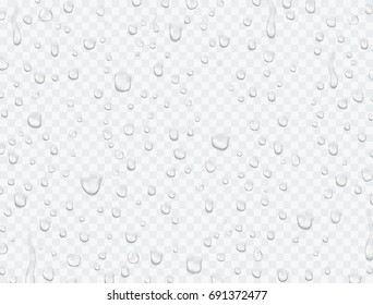 Water rain or shower drops isolated on transparent background. Realistic pure water droplets condensed. Vector clear vapor bubbles on window glass surface for your design.