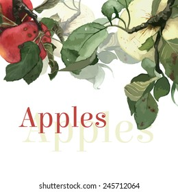 Watercolor apples with leaves. Background. Hand drawn
