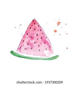 Watercolor aquarelle melon, vector design. Colorful fresh fruit