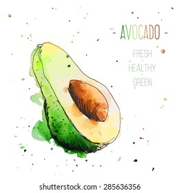 Watercolor avocado with splashes in free style. Fresh and juicy colors. Hand drawn isolated on white background. Vector illustration