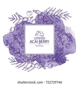 Watercolor background with acai berries and acai palm. Superfood. Vector hand drawn illustration