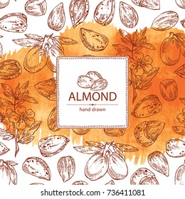 Watercolor background with almond: almond nuts, fruits, flower and leaves. Vector hand drawn illustration