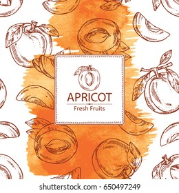 Watercolor  background with apricot and apricot slice. Vector hand drawn illustration