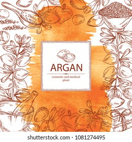 Watercolor background with argan: leaves and argan nuts.. Oil, soap and bath salt . Cosmetics and medical plant. Vector hand drawn illustration