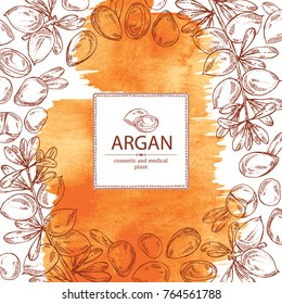 Watercolor background with argan: leaves and argan nuts. Cosmetic and medical plant. Vector hand drawn illustration.