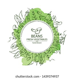 Watercolor background with beans: beans pod and plant. Vector hand drawn illustration