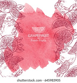 Watercolor background with grapefruit and grapefruit slice. Vector hand drawn illustration