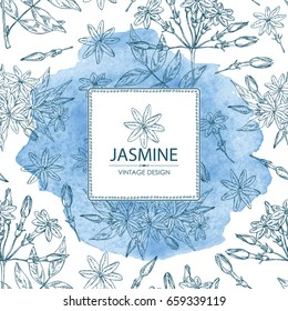 Watercolor background with jasmine: flower and leaves.Cosmetic, perfumery and medical plant. Vector hand drawn illustration