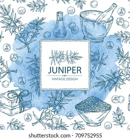 Watercolor background with juniper, berries juniper, essential oil, soap, bath salt and mortar and pestle. Cosmetic, perfumery and medical plant. Vector hand drawn illustration.