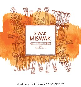 Watercolor background with miswak, siwak: natural toothbrush, plant, branch and leaves. Vector hand drawn illustration.